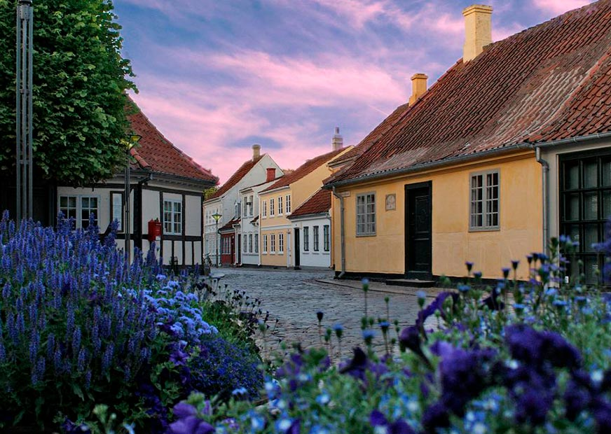 Cobbled streets and colourful houses of Odense with purple flowers in the foreground and pink sky in the background